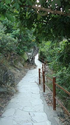 The Path to the Baths of Aphrodite   Latchi, Cyprus