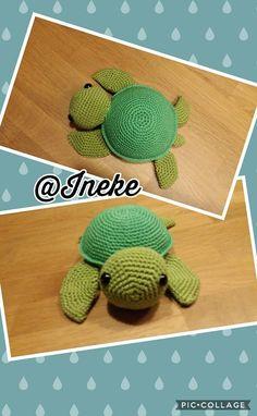 Schildpad, via Freubelweb