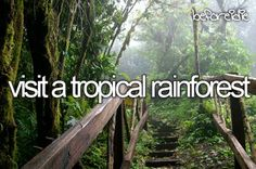 Visit A Tropical Rain Forest