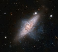 space-pics:  Aligned Galaxies NGC 3314 / Source / by Hubble Heritage
