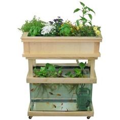 """Earth Solutions """"Little Tokyo"""" Aquaponics Container Gardening @ Home Depot"""