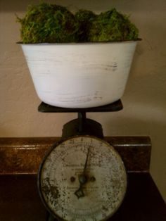 Vintage Scale & Moss Covered Balls - Just Add Some Java.blogspot Cottage Style, Farmhouse Style, Cozy House, Java, Balls, Scale, Product Launch, Cool Stuff, Crafts