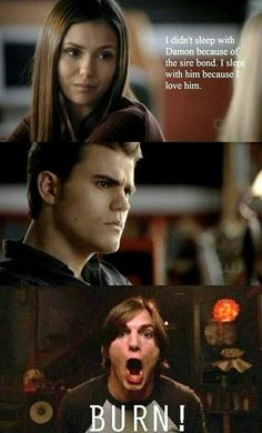 😂 Love The Vampire Diaries AND That Show. This crossover is hilarious! Vampire Diaries Memes, Vampire Diaries Damon, The Vampire Diaries Serie, Vampire Daries, Vampire Diaries Wallpaper, Vampire Diaries The Originals, Stefan Salvatore, Damon Salvatore Quotes, Delena