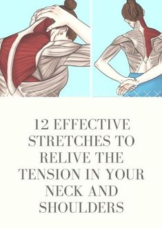 Is your life and work making you suffer neck and shoulder pain These effective stretches are easy to perform and […] is part of Neck pain exercises - Fitness Workouts, Yoga Fitness, Health Fitness, Easy Fitness, Workout Routines, Fitness Motivation, Neck And Shoulder Stretches, Neck And Shoulder Pain, Shoulder Pain Exercises