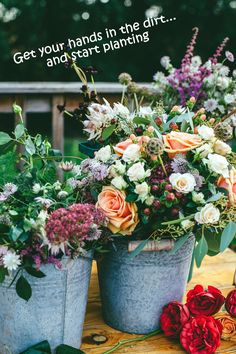 14 Tremendous - Majestic Wedding Photography Ideas : Fetching assorted flowers on gray metal bucket Flower Images, Flower Pictures, Elisa Lucinda, Deco Floral, Exotic Flowers, Fresh Flowers, Colorful Flowers, Flora Flowers, Lotus Flowers