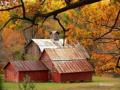 Autumn Barns and homestead, this is the beautiful sign of fall!