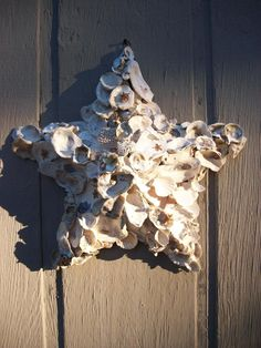 Oyster Star Wall Decor Beach Cottage Chic by QueenBeeByTheSea, $49.00