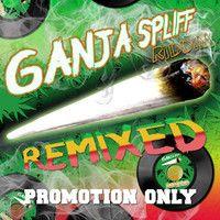 Sennid - Keep On Chanting (Ganja Spliff Remix) (Free Promotion Download) by DigitalStereoRecordings #HighTunes #w33daddict #cannabis #ganja #marijuana #herb #higrade #Hash #Pot #music #☠