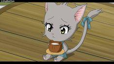 [Fairy tail OC] Kitty exceed by HyokaChan on DeviantArt Fairy Tail Cat, Fairy Tail Sting, Fairy Tail Kids, Fairy Tail Dragon Slayer, Arte Fairy Tail, Image Fairy Tail, Fairy Tail Anime, Oc Manga, Anime Oc