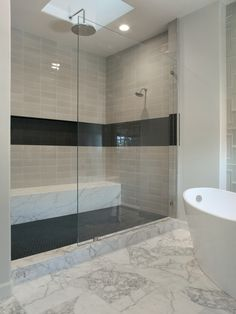 glass panel, no door...Black Tile Design, Pictures, Remodel, Decor and Ideas - page 3