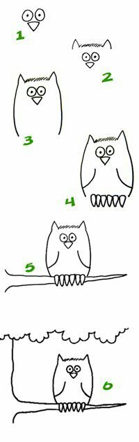 Learn to draw an owl Doodle Drawings, Animal Drawings, Doodle Art, Easy Drawings, Cartoon Drawings, Drawing Lessons, Drawing Techniques, Art Lessons, Drawing Tips