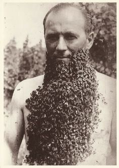 vintage everyday: Man with a Bee Beard, 1960
