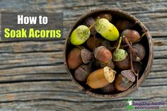 How to Soak Acorns. A Delicious (and Free!) Snack Healthy Snacks, Healthy Eating, Herbs For Health, Medicinal Plants, Acorn, Seeds, Vegetables, Free, Homesteading