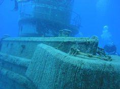 Stuart Cove's Dive Bahamas -shipwreck, plane wreck, swim w sharks!!