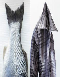 Food Photography: fish or shirt | fisch & seafood . Fisch & Meeresfrüchte . poisson & fruits de mers | Photo: Arjan Benning |