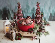 Compre arranjo natal para sessão newborn na Loveprop,a maior loja de Props para Fotografia Newborn do Brasil com Pronta Entrega e pagamento em até 12 Vezes.
