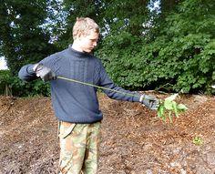 How To Make Nettle Cordage Jonsbushcraft Primitive Technology Plant Fibres Bushcraft