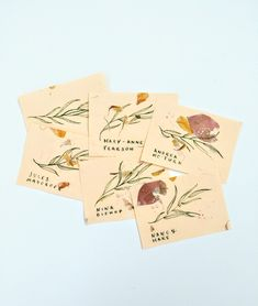 😱😱😱 Delicate peach and petal paper place names, featuring individual illustrations on each card.