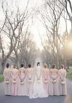 The Bride and Her Bridesmaids. I think pale pink/grey would be a wonderful color for bridesmaid dresses!