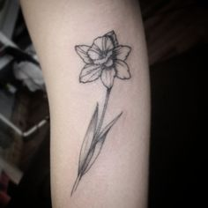 What does daffodil tattoo mean? We have daffodil tattoo ideas, designs, symbolism and we explain the meaning behind the tattoo. Narcissus Flower Tattoos, Daffodil Tattoo, Poppies Tattoo, Black Tattoos, Body Art Tattoos, Small Tattoos, Tattoos For Guys, Flower Tattoo Meanings, Flower Tattoo Designs