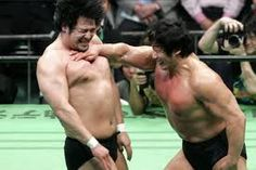 Because it's the only sport where slaps are manly.    - Kenta Kobashi