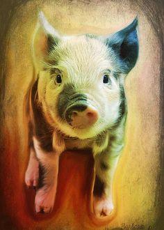 Pig is beautiful Greeting Card by Barbara Orenya