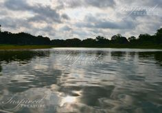 This lake is ripe for fishing! http://myinspiredtreasure.weebly.com Find us on Facebook at www.facebook.com/myinspiredtreasure
