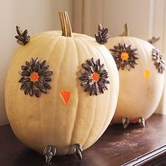 Use glue and sunflower seeds to make this owl pumpkin
