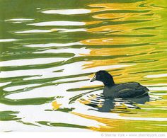 Afternoon Float (American coot) Reduction linocut by Sherrie York. Linocut Prints, Art Prints, Block Prints, Painting & Drawing, Watercolor Paintings, Art Brut, Water Art, Wood Engraving, Wildlife Art