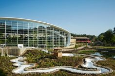 Woburn Watch May: Your monthly insight into the build of Woburn Forest - Center Parcs Blog
