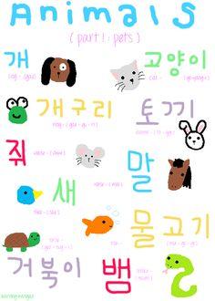animals #korean