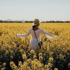 Tanya • Travel Blogger sur Instagram : Fields of gold in @carolinalifestylelabel