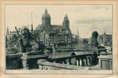 In 1904 there were 22 large stone lions on the railway viaducts near Centraal Station in Amsterdam. There were 8 on the Oostertoegang, 8 on the Westertoegang and 6 on the railway viaduct opposite the Eenhoornsluis at the Korte Prinsengracht. Starting in 1904 the stone lions were removed due to construction around Centraal Station. 15 of the stone lions have been found in places as far away as Vlissingen. Where are the remaining 7 stone lions? #amsterdam #centraalstation #lions