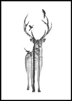 Stilren poster med hjort i svart tavelram.