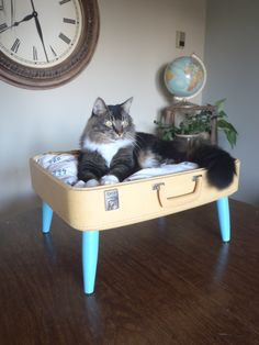 Cats and suitcases: Lovable Luggage Shabby Pet Bed Blues and Creams von SalvageShack