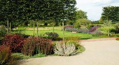 Garden & Landscape Design | The Outdoor Room