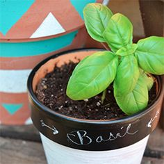 DIY chalkboard pots...I've been wanting to paint the pots in my breakfast nook just like this.