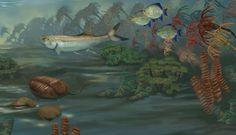 A Mississippian Marine Habitat (359 - 318 Million Years Ago) | Smithsonian Ocean Portal