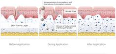 The Science of Aging Underneath the top layer of our skin is a firm, cushiony material called the matrix. Advanced Skin Care, Shocking Facts, Love Your Skin, Ageless Beauty, Anti Aging Serum, Younger Looking Skin, New Skin, Naturally Beautiful, Healthy Skin