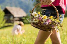Aktivitäten im Hotel: Kurse und Workshops Crown, Farmhouse, Heart, Creative Crafts, Woodland Forest, Nature, Flowers, Corona, Crowns