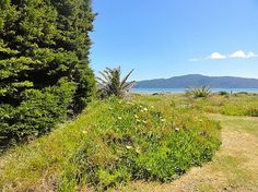 Wellington - Wairarapa/Kapiti Coast/Paraparaumu Beach holiday home rental accommodation - Takutai - Paraparaumu Beach Bach