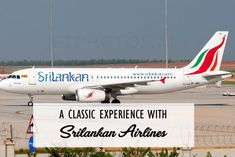 A Classic Experience With Srilankan Airlines - A perfect flight journey that has proper management, professional cabin crew, and welcoming ambiance. Srilankan Airlines, Thing 1, Cabin Crew, I Win, Capital City, Business Travel, Chennai, Sri Lanka, Aircraft