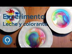 Experimento de leche y colorante - YouTube