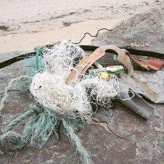 Nettoyage du jour. Promenade de 10 min grande plage#saintgillescroixdevie