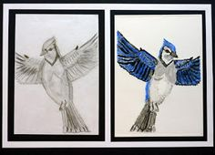 Mrs. Kamp's Canvas: Adventures in Middle School Art!: Bird Drawings and Watercolor Prints after John James Audubon