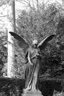 angel 33bw | Flickr - Photo Sharing!