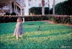 Tips for Bringing an Infant to Walt Disney World