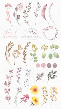 Watercolor floral edges+backgrounds