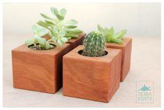 No te quedes sin tu mini-bonita. Macetas hechas a mano con maderas recuperadas para cactus y suculentas.