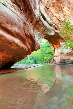 ~ Coyote Natural Bridge ~ The Grand Staircase - Escalante National Monument, Utah.